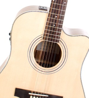 Turner 40 CE 12 String